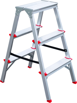 Double domestic ladder